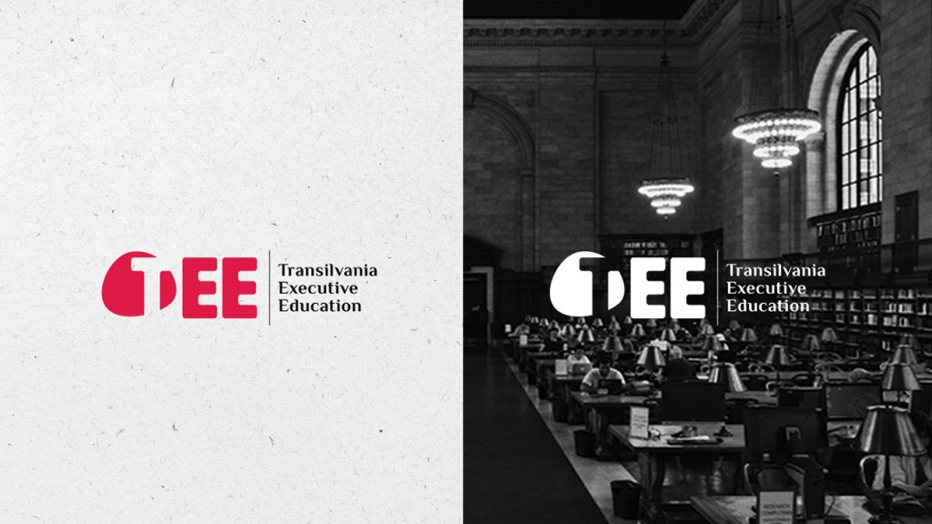 REBRANDING TRANSILVANIA EXECUTIVE EDUCATION Footer Gallery Picture